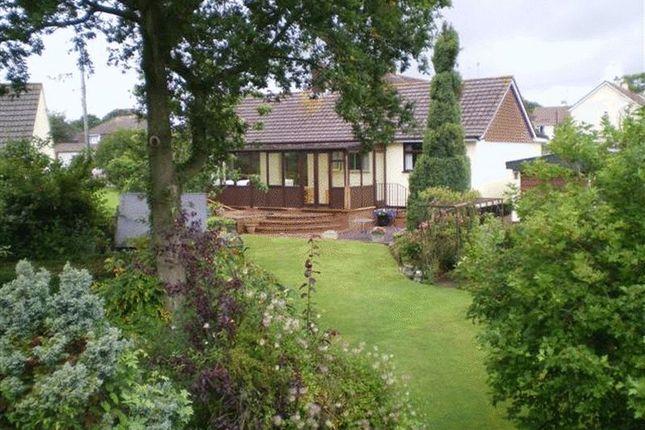 Thumbnail Detached bungalow to rent in Eastlands, Hemyock, Cullompton