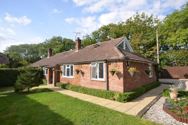 Thumbnail Bungalow to rent in Chalky Lane, Dogmersfield, Hook
