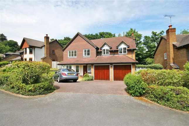 Thumbnail Detached house to rent in Rushmere Place, Englefield Green, Egham, Surrey
