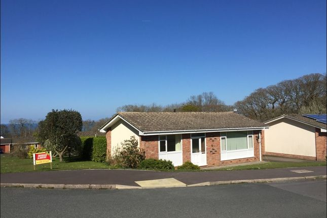 Thumbnail Bungalow to rent in Cwm Halen, New Quay