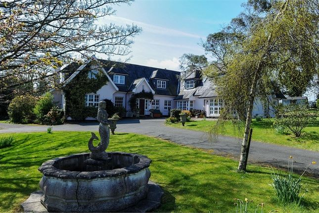 Thumbnail Detached house for sale in Strangford Road, Downpatrick, County Down