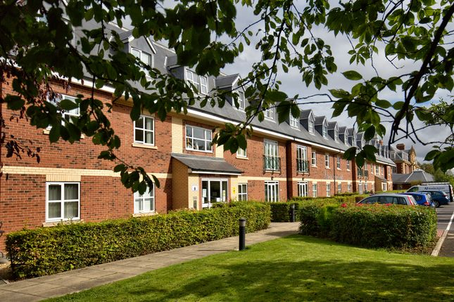Thumbnail Flat to rent in Park Road North, Albert Park, Middlesbrough