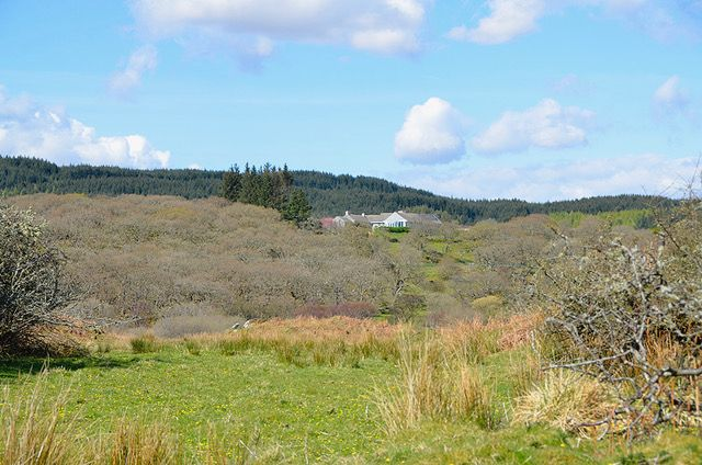 Thumbnail Bungalow for sale in Dunmore, Tarbert