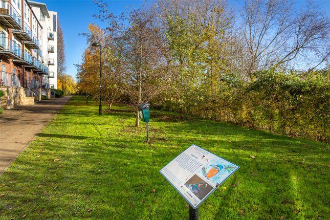 Local Greenspace of Bellerby Court, Palmer Lane, York, North Yorkshire YO1