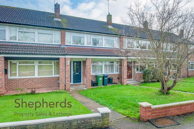 Thumbnail Terraced house to rent in Hobsons Close, Hoddesdon, Hertfordshire