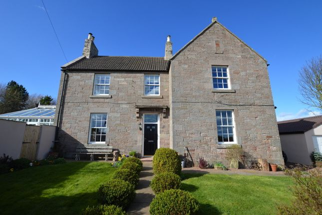 Thumbnail Detached house for sale in Halidon Hill, Berwick Upon Tweed, Northumberland
