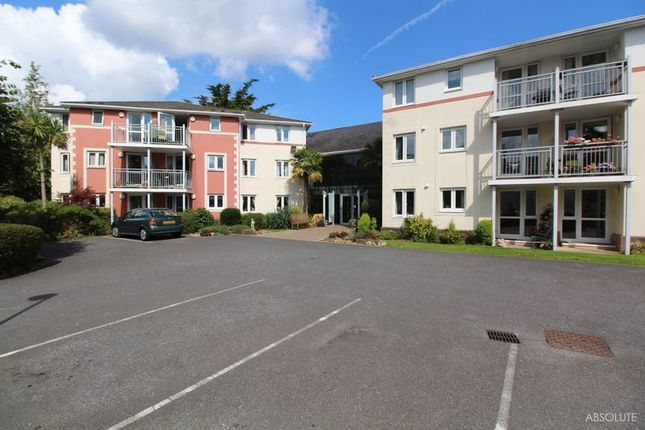 Thumbnail Property for sale in Stanley Road, Torquay