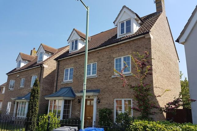 Thumbnail Detached house to rent in Juniper Road, Red Lodge