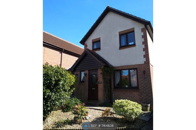 Thumbnail Detached house to rent in Spicer Way, Chard