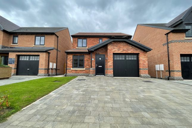 Thumbnail Detached house to rent in Barnaby Way, Ponteland