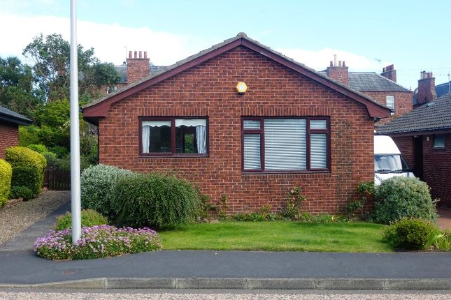 Thumbnail Bungalow to rent in Newhouse Avenue, Dunbar, East Lothian