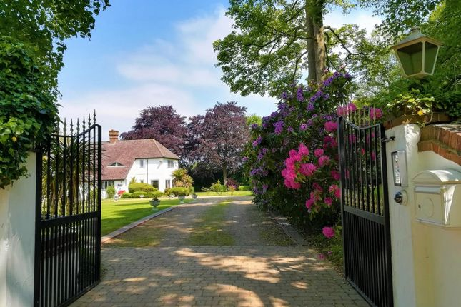 Thumbnail Detached house for sale in Rushmore Hill, Knockholt Sevenoaks