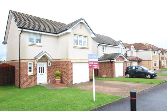 Thumbnail Property for sale in Sandyvale, Stonehouse, Larkhall