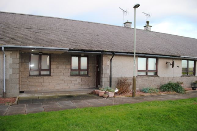 Thumbnail Bungalow to rent in Ladyloan, Arbroath