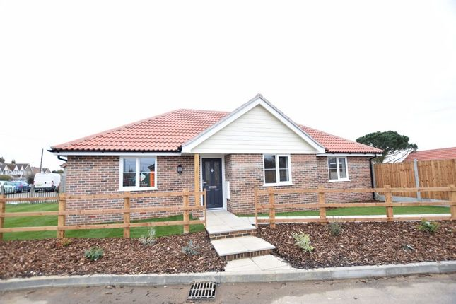 Thumbnail Detached bungalow for sale in Holland Road, Little Clacton, Clacton-On-Sea