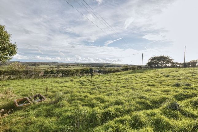 Thumbnail Land for sale in Alnwick