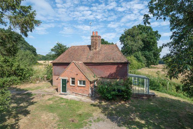 Thumbnail Detached house to rent in Bockham Lane, West Brabourne, Ashford, Kent