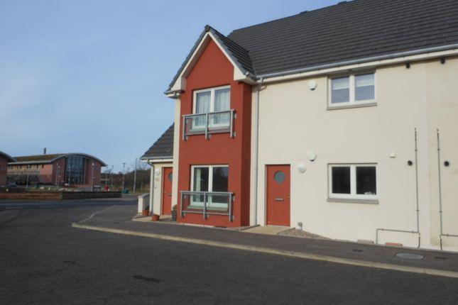 Thumbnail Flat to rent in The Quay, Newburgh, Aberdeenshire