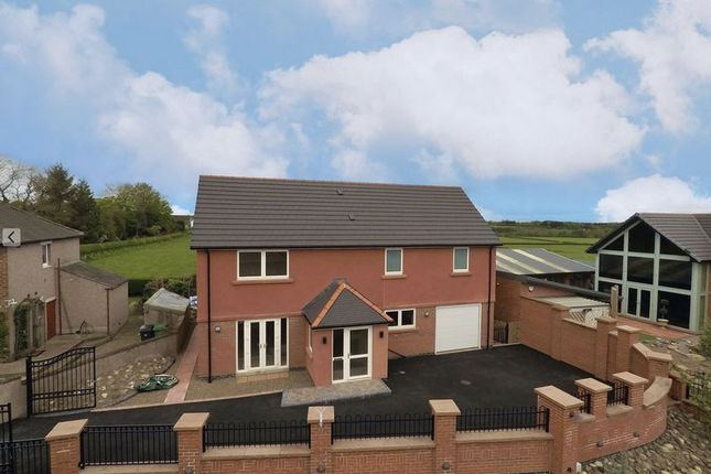 Thumbnail Detached house for sale in Caldew Cottage, Lowry Street, Carlisle