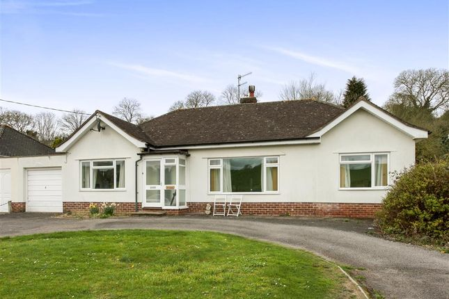 Thumbnail Detached bungalow for sale in Blandford Road, Coombe Bissett, Salisbury