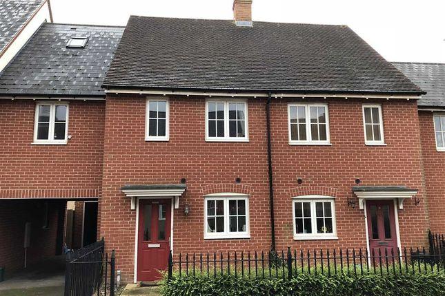 Thumbnail Semi-detached house for sale in Rose Allen Avenue, Colchester