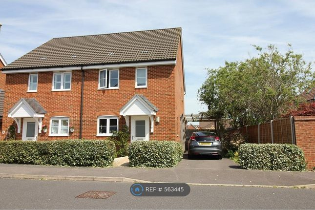 Semi-detached house to rent in Westland Drive, Lee-On-The-Solent