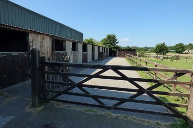 Thumbnail Commercial property to let in Riverdell Stables, Blatchbridge, Nr Frome