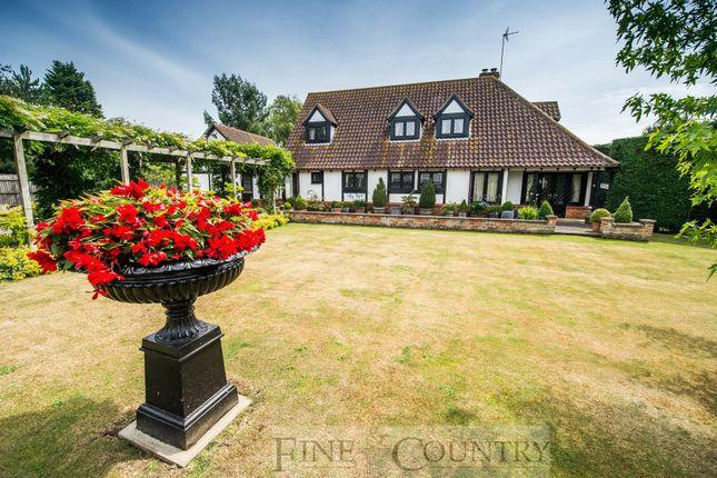 Thumbnail Detached house for sale in Broadgate, Sutton St. Edmund, Spalding, Lincolnshire