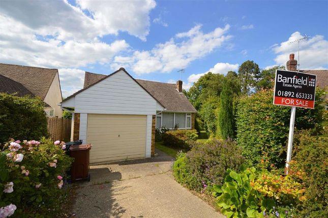 Thumbnail Detached bungalow for sale in Elim Court Gardens, Crowborough