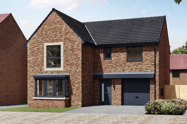 """Thumbnail Detached house for sale in """"The Grainger"""" at Alan Peacock Way, Middlesbrough"""