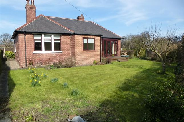 Thumbnail Detached bungalow to rent in Meadow Road, Royston, Barnsley