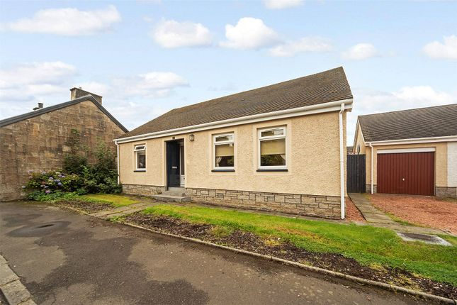 Thumbnail Bungalow for sale in Millar Street, Stonehouse, Larkhall