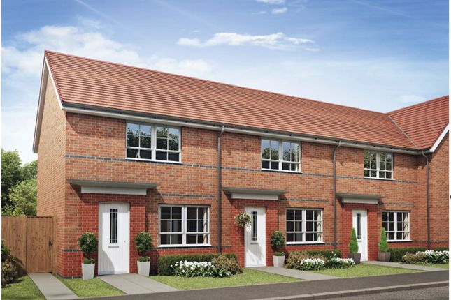 "Thumbnail Terraced house for sale in ""Roseberry"" at Barmston Road, Washington"