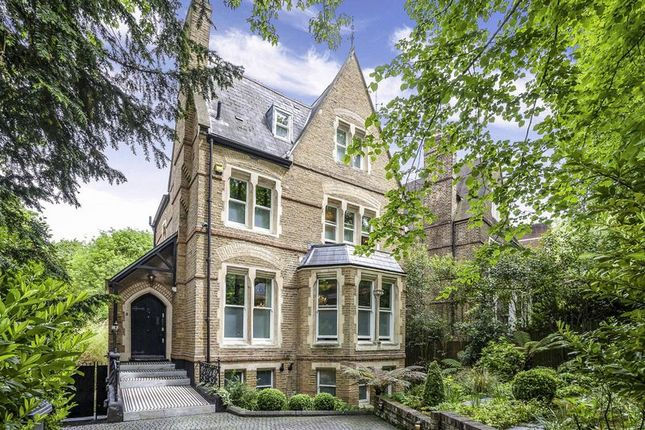 Thumbnail Detached house for sale in Crescent Road, London