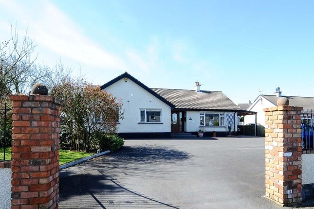 Thumbnail Bungalow for sale in Church Road, Carrowdore