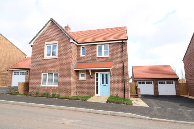 Thumbnail Detached house to rent in Stag Valley Road, Bridgwater