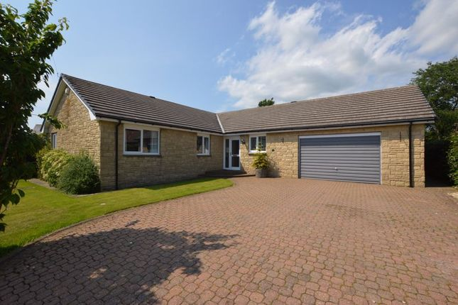 Thumbnail Bungalow for sale in Grange Park, Rennington, Northumberland