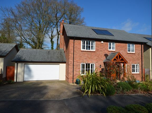 Thumbnail Detached house for sale in Aubyns Wood Avenue, Tiverton