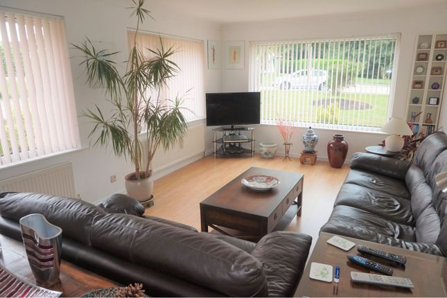 Thumbnail Detached bungalow for sale in Spencer Glade, Ryde