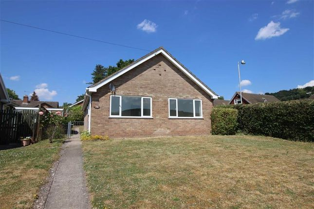 Thumbnail Bungalow to rent in Hillcrest Road, Wyesham, Monmouth