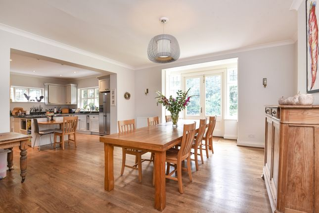 Thumbnail Detached house to rent in Stratton Road, Winchester