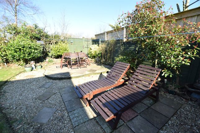 Garden of Bridge Park, Bridgerule, Holsworthy EX22