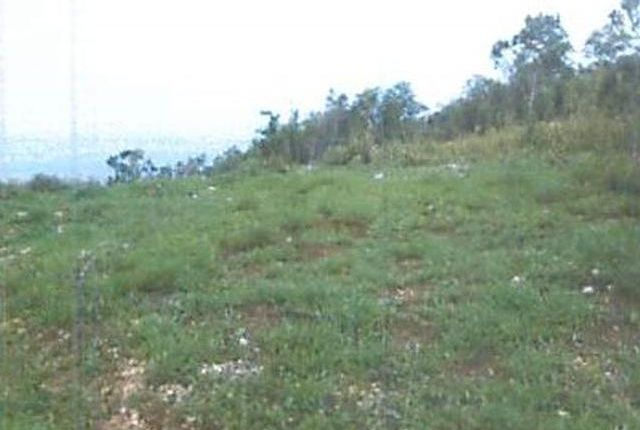 Land for sale in Spanish Town, Saint Catherine, Jamaica