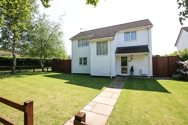 Thumbnail Detached house for sale in Paddocks Drive, Newmarket
