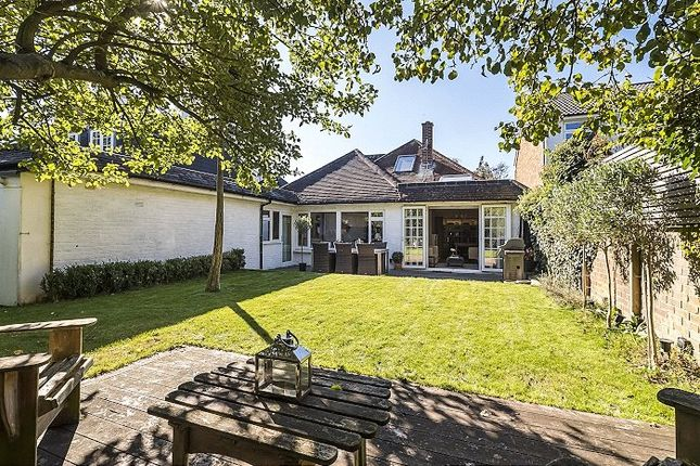 Thumbnail Link-detached house for sale in Arterberry Road, Wimbledon