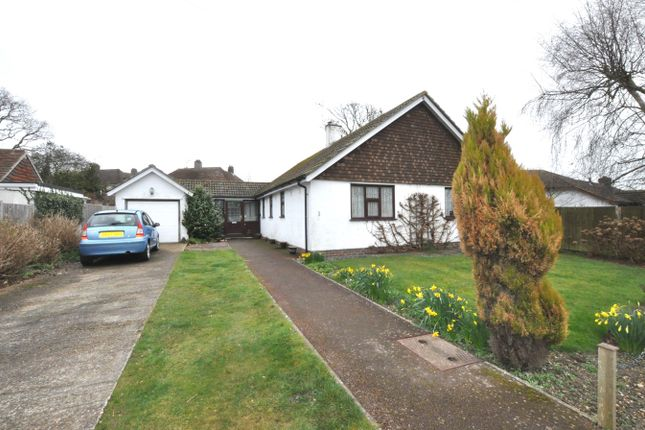 Thumbnail Detached bungalow for sale in Chestnut Walk, Bexhill-On-Sea