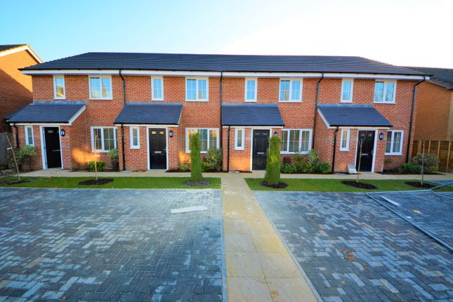 Thumbnail Property to rent in Hollands Close, Portsmouth