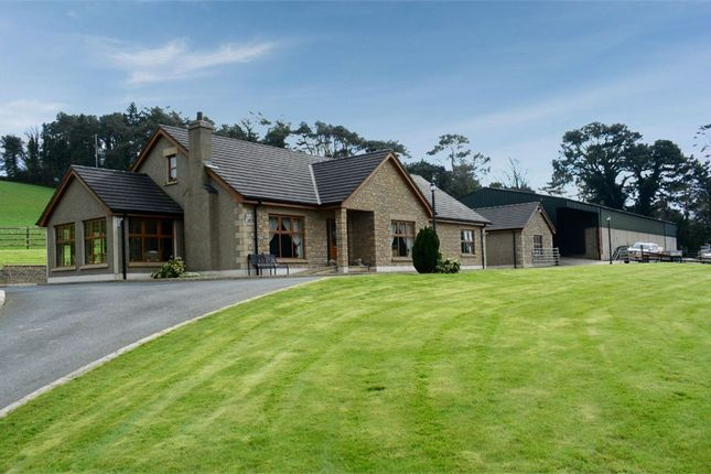 Thumbnail Detached house for sale in Newcastle Road, Ballynahinch, County Down