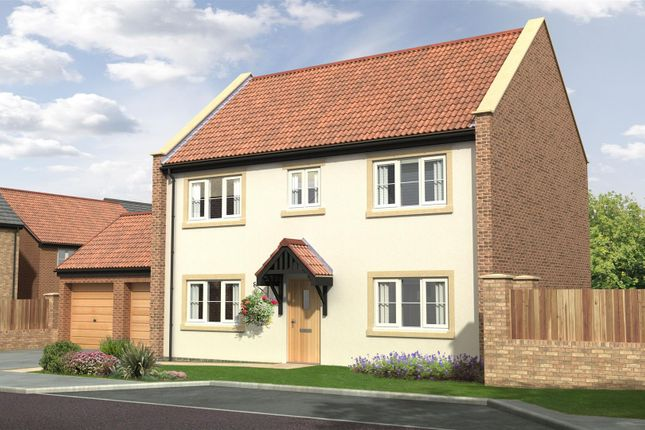 Thumbnail Detached house for sale in The Mulberry - Nursery Gardens, Station Road, Stannington
