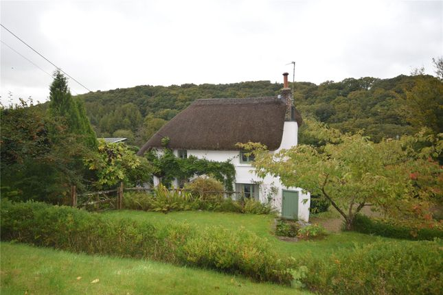 Thumbnail Detached house to rent in Cottwood, Riddlecombe, Chulmleigh